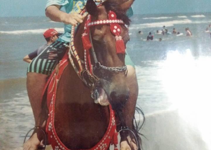 رواية عمر فضل الله: نيلوفوبيا موسوعة اجتماعية نفسية تاريخية – بقلم السيدالراعي